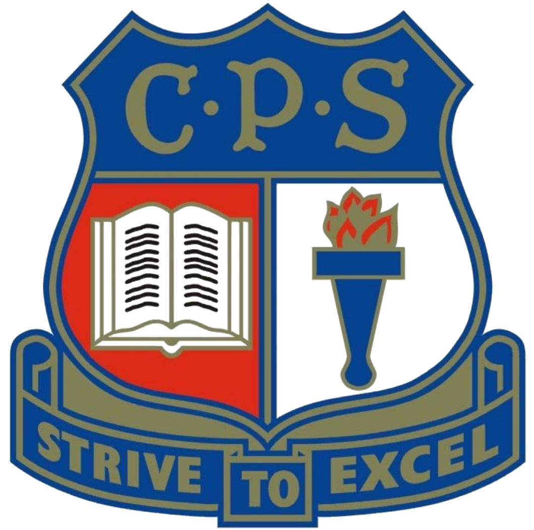 Casino Public School logo